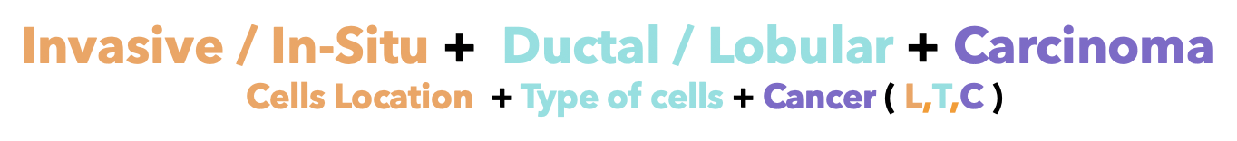 Invasive / In-Situ + Ductal / Lobular + Carcinoma (Cells location + Type of cells + Cancer (L,T,C))